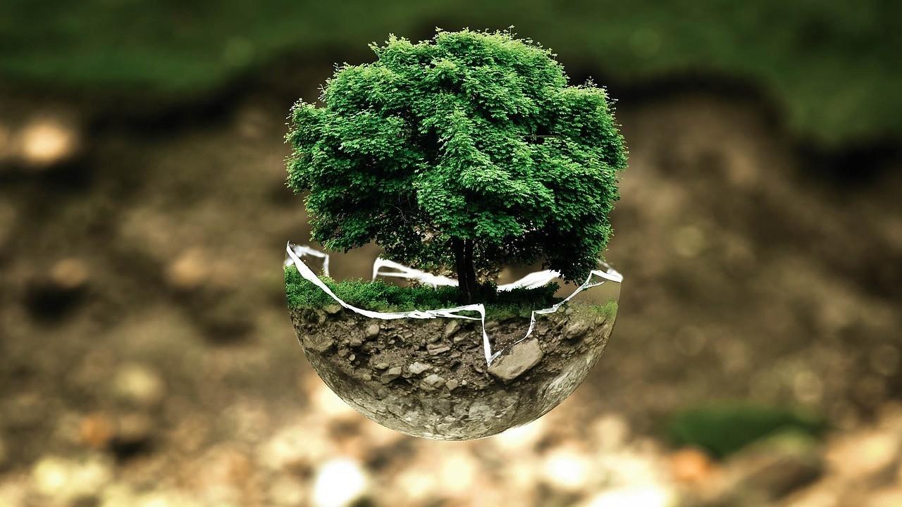 Czy technologia to również ekologia?
